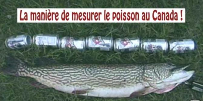 905_poisson_de_7_can.jpg